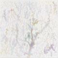 熊谷直人 - 三つの森